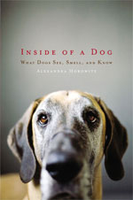 Inside of a Dog, by Alexandra Horowitz